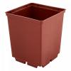 Kvadratinis vazonėlis daigams 7 x 7 x 6,5 cm