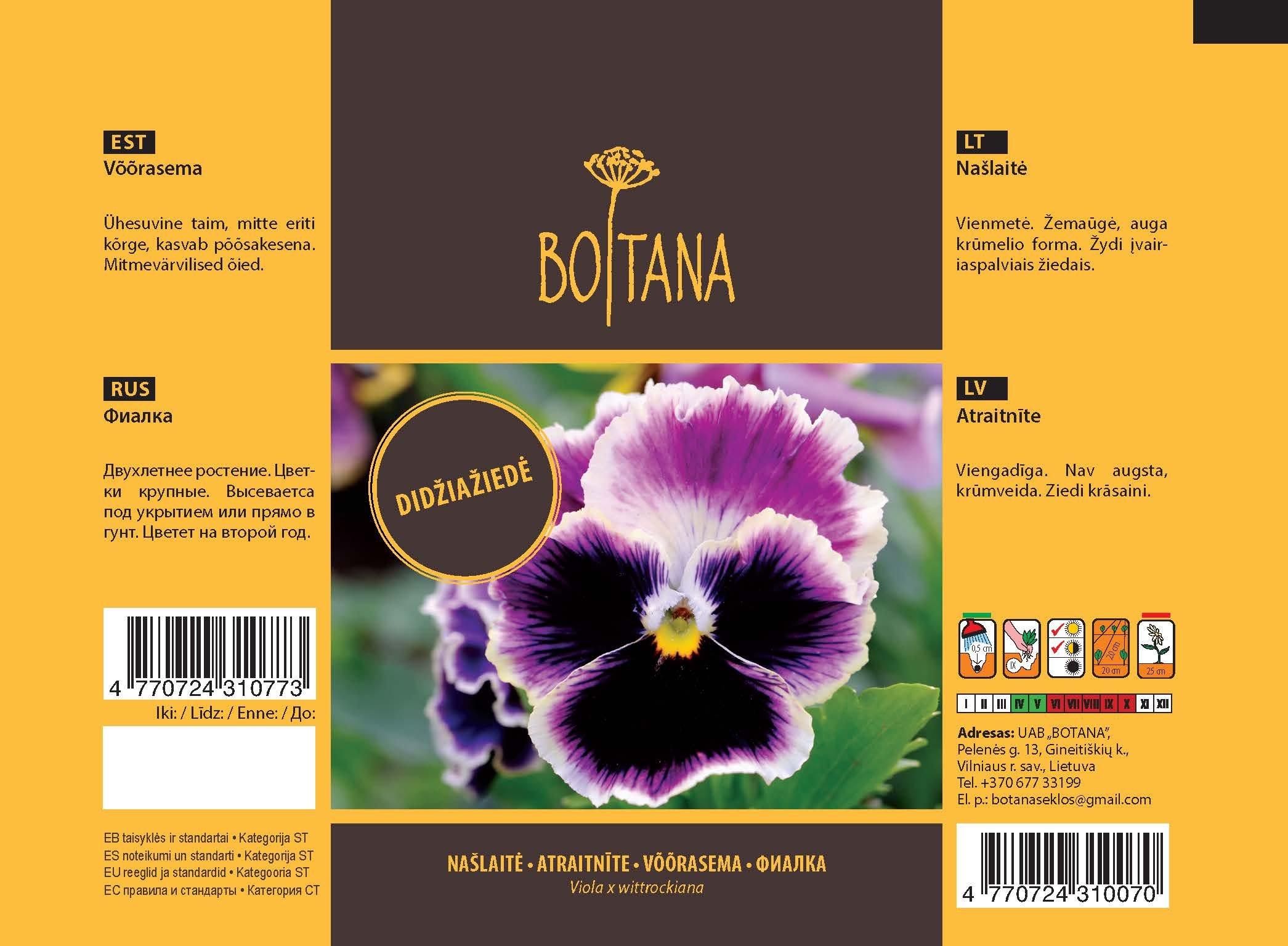 Sėklos gėlių, Našlaitė Viola Swiss Giants mixed, 0,1 g.